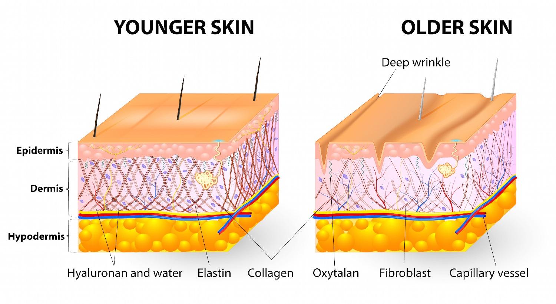 co-nen-uong-nuoc-collagen
